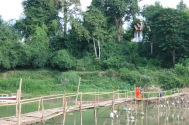 Bamboo bridge for crossing the Nam Khan River where it meets the Mekong