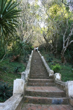 Stairway to the top of Mt