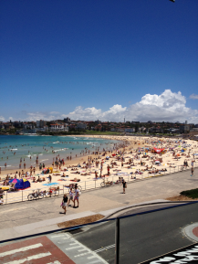 Bondi at Christmas