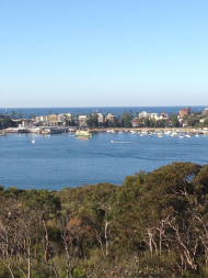 Manly Ferry in the Distance