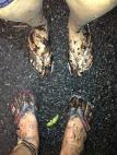 More-Mud