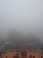 View from Surry Hills across Redfern and out to Port Botany. Take my word for it, its there.