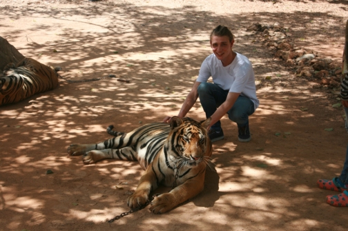 Tommy Tiger 03