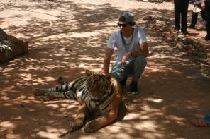 Danny Tiger 02
