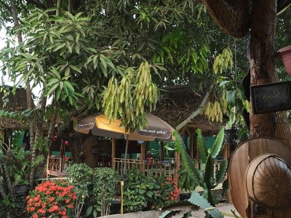 Ban Thongkang Cafe Salas
