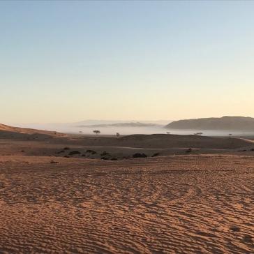 Morning mist over the desert